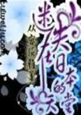 迷失在日本的天堂封面