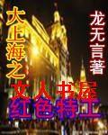 大上海之红色特工封面